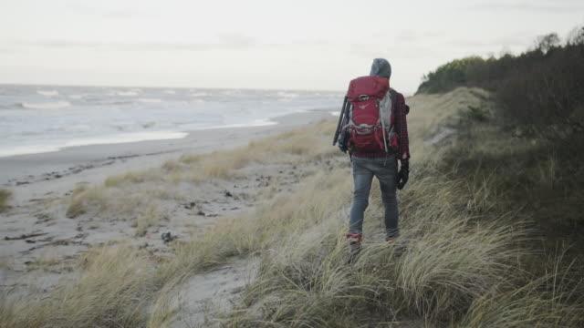 outdoorsy photographer walking in forest - łotwa filmów i materiałów b-roll