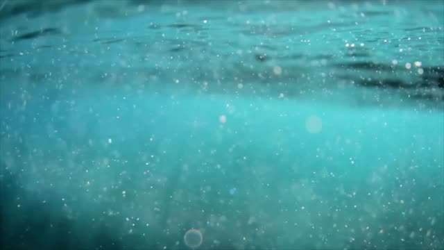 Over and Under Ocean Water Over and Under Ocean Water surface level stock videos & royalty-free footage