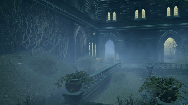 Overgrown courtyard old mansion at misty night video