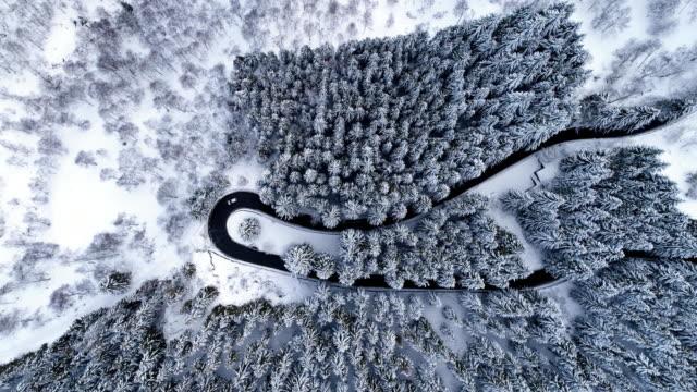 stockvideo's en b-roll-footage met overhead luchtfoto bovenaanzicht over auto reizen op haarspeldbocht zet weg in de winter sneeuw bedekte bergbos. white pine tree bos. besneeuwde straat pad establisher.4k drone vlucht straight-down - sneeuwkap