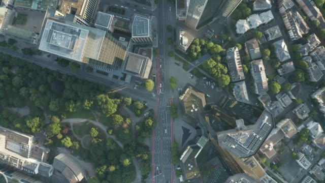 AERIAL: Overhead City From Above View of Frankfurt am Main Center Streets with Skyscraper Roof in Summer light AERIAL: Overhead City From Above View of Frankfurt am Main Center Streets with Skyscraper Roof in Summer light 4K high angle view stock videos & royalty-free footage