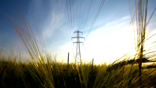 Overhead power lines in a rural field A video of overhead power cables in a field of barley. The towers stand out against the blue sky. The video was taken late in the evening when the sun was setting. power supply stock videos & royalty-free footage
