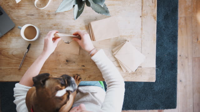 Overhead Shot Looking Down On Woman With Pet Dog Writing In Generic Thank You Card Overhead view looking down on woman sitting on sofa writing thank you car with pet english bulldog on her lap thank you stock videos & royalty-free footage