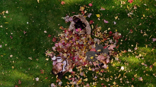 Overhead shot of three kids throwing leaves video