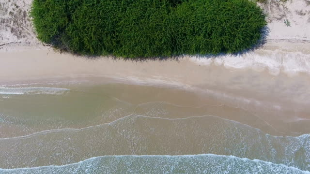 Overhead Shot of Wave Breaking on Beach, Aerial video video