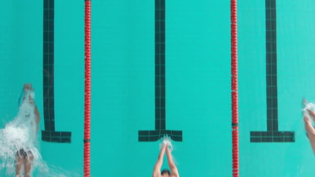 Overhead view of multi-ethnic group of male swimmers at a swimming pool