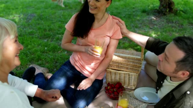 Overjoyed family enjoying the picnic video