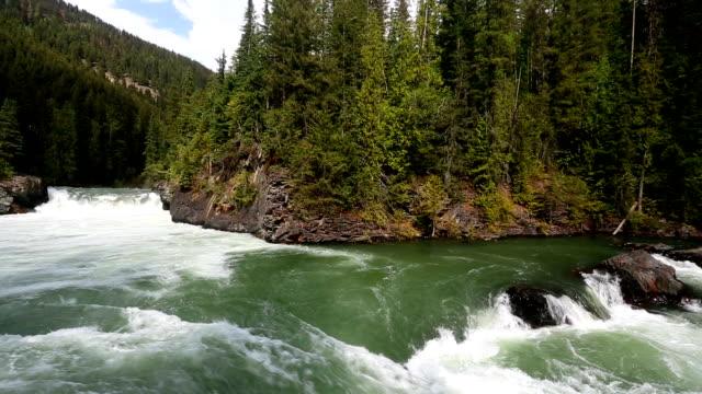 overlander falls fraser river - fiume fraser video stock e b–roll