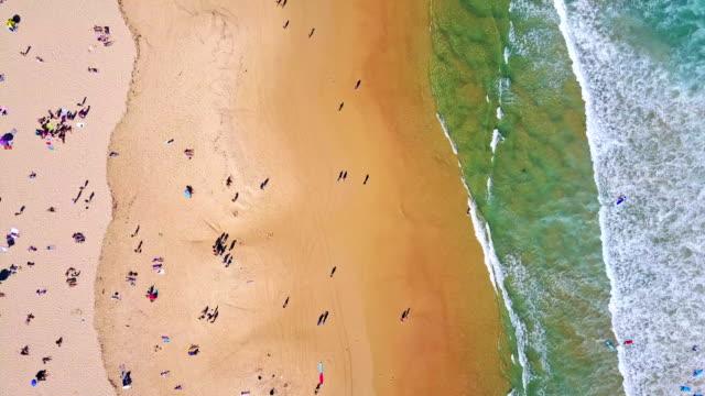 overlooking bondi beach or bondi bay at sunny day in sydney - загар стоковые видео и кадры b-roll