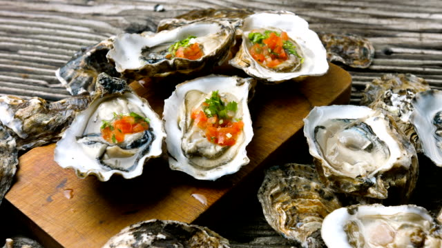 oyster - seafood stock videos and b-roll footage