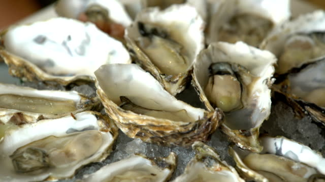 Oysters and champagne in a restaurant. Oysters and champagne in a restaurant. raw footage stock videos & royalty-free footage