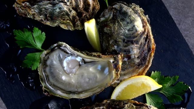 Oysters and lemon on grey background seafood, Turntable video