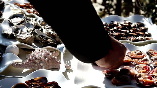 oysters mussels, sea urchins seafood buffet video