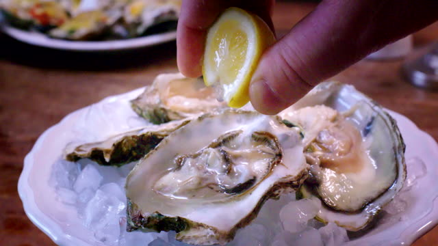 vídeos de stock e filmes b-roll de oysters on plate with ice and lemon - cru
