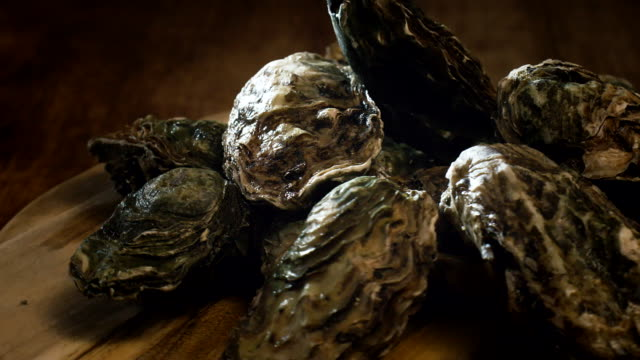 Oysters on plate with Tabasco sauce and lemon video