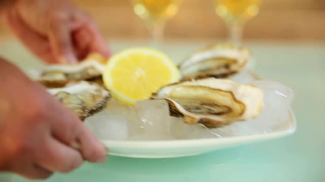 oysters with white wine. feed meals video