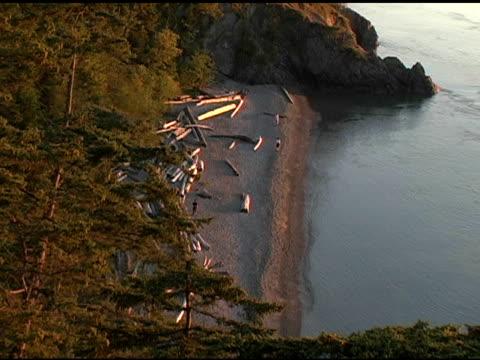 pacific northwest beach - high angle - 10 saniyeden daha kısa stok videoları ve detay görüntü çekimi