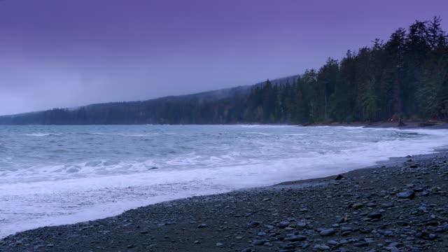 pacific west küste ozean insel strand landschaft, sturm wetter - vancouver kanada stock-videos und b-roll-filmmaterial