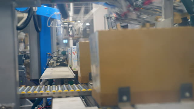 vídeos de stock e filmes b-roll de packaged carton boxes are moving along the conveyor - expedir