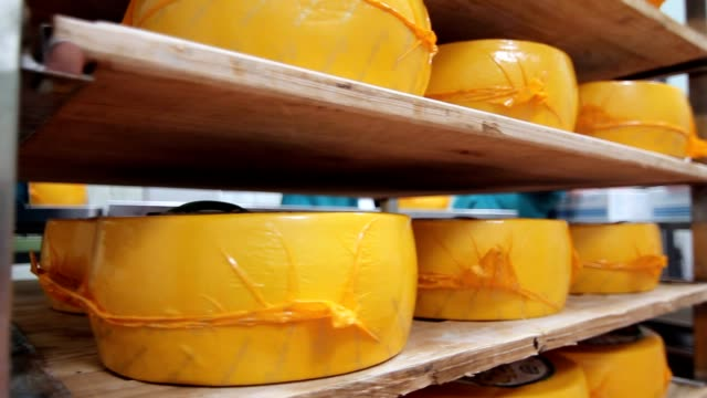 Packaged cheese wheels on shelves in factory warehouse. Cheese production Packaged cheese wheels on shelves in factory warehouse. Technology of cheese production. Wheels cheese stored on shelves of warehouse factory. Dairy production cheese stock videos & royalty-free footage