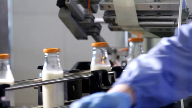 Packaging bottles line in the milk industry video