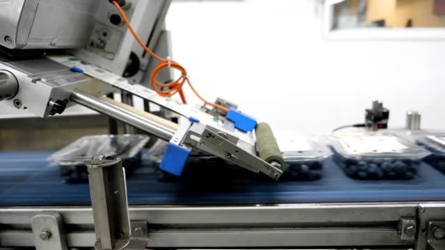 meyve çiftliğinde etiketler için paketleme makinesi. - gıda ve i̇çecek sanayi stok videoları ve detay görüntü çekimi