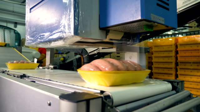 Packed sausages on trays pass automating labeling. video