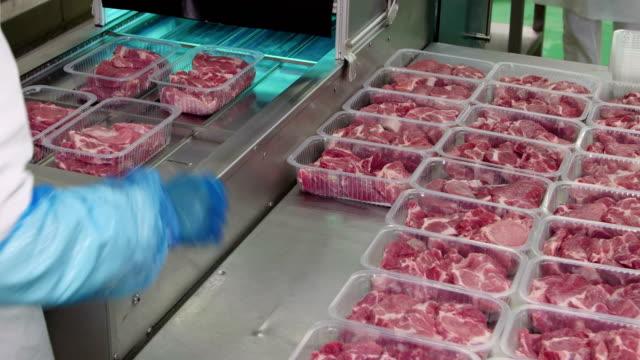 pakowanie plastrów mięsa w pudełkach na taśmie przenośnika - mielona wołowina filmów i materiałów b-roll