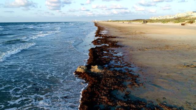stockvideo's en b-roll-footage met padre island magische ochtend op het strand zonsopgang boven het water laag slowmotion back-up over paradise sandy beach perfecte kleuren - baai