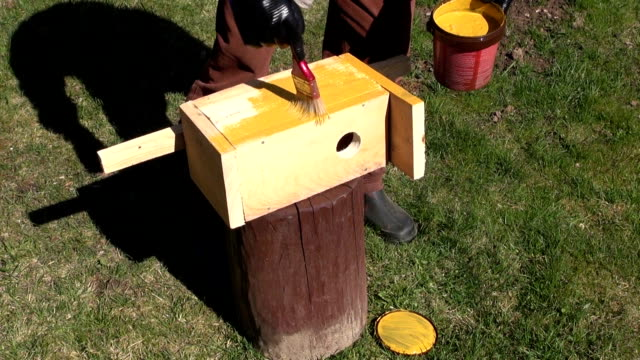paint in yellow new bird house video