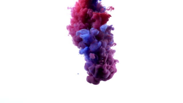 Paint splash on white background. video