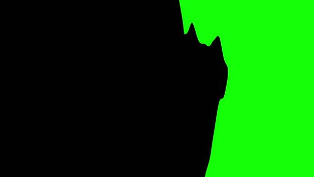 ペイントブラシの遷移。クロマキー合成用。各アニメーションは 1 秒間続く。 - 習字点の映像素材/bロール