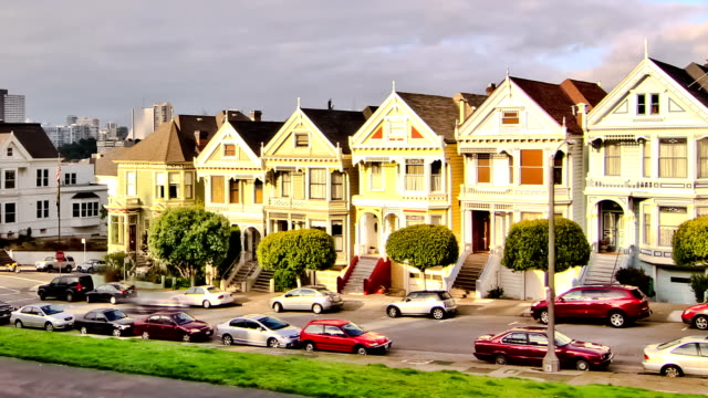 Painted Ladies Time Lapse Zoom video