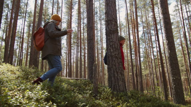 vídeos de stock e filmes b-roll de pair of aged hikers walking in forest - idosos ativos