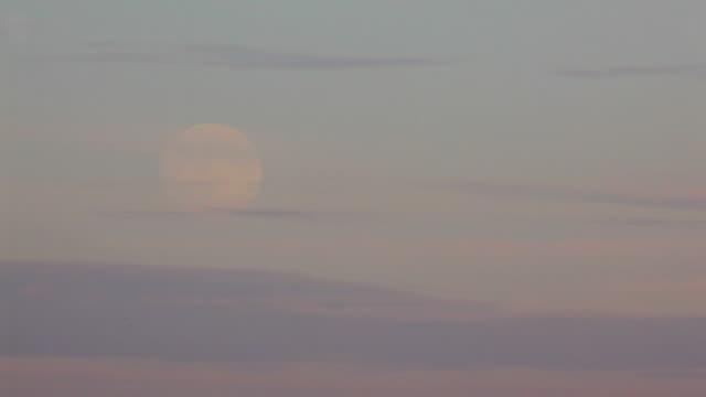 Pale Moon Rise