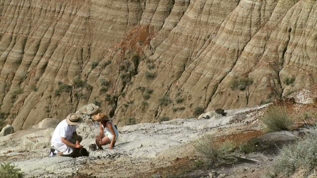 stockvideo's en b-roll-footage met hd: paleontologists - geologie