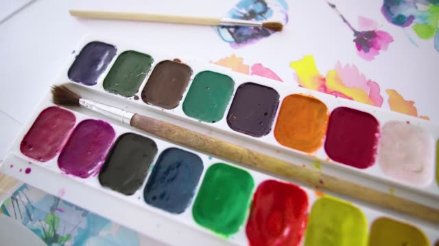 Palette of paints, on canvas with drawings of flowers video