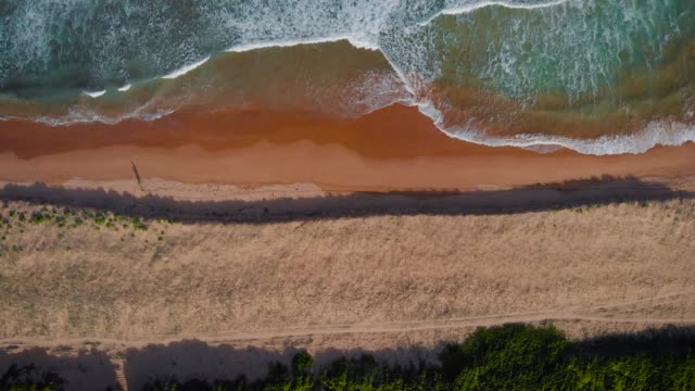 Palm Beach, Australia. Ocean waves roll on the sandy coastline, top view from above