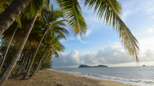 palm cove-queensland, australien - bucht stock-videos und b-roll-filmmaterial