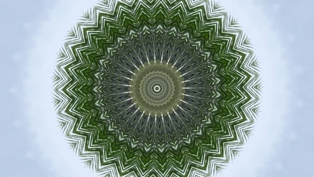 vídeos de stock e filmes b-roll de palm leaf in haleidoscope effect and white background 4k - mandala