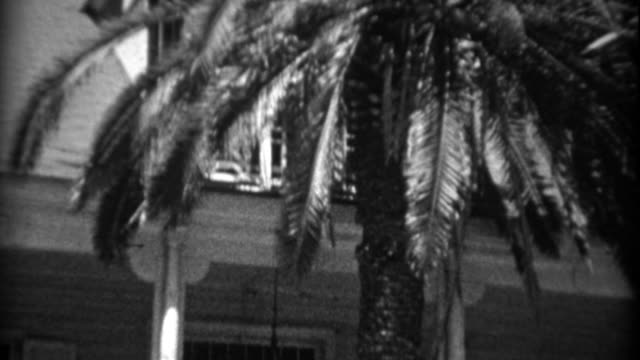 1934: Palm tree growing through home porch staircase entrance. video