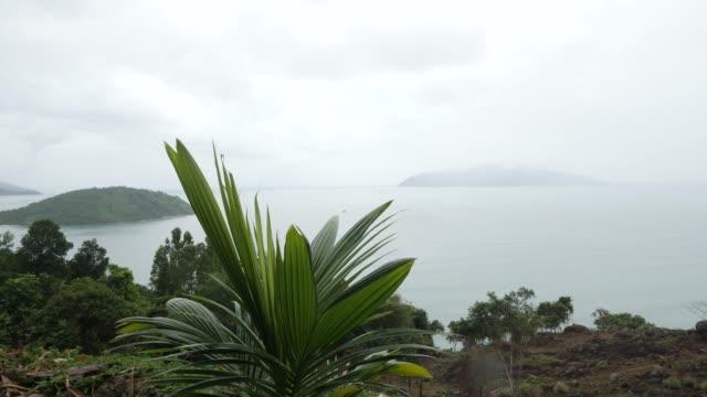 palmenblätter schwingen auf dem hintergrund von nstrichen tropischen inseln und ozean. - indochina stock-videos und b-roll-filmmaterial