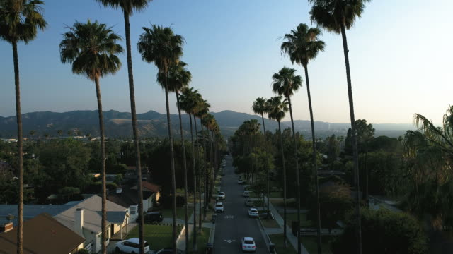 Palm tree lined street at sunset in Los Angeles - Glendale, CA - 4k aerial drone