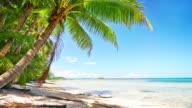 istock Palm tree. Luxuty beach. Travel. Holiday 1184292326