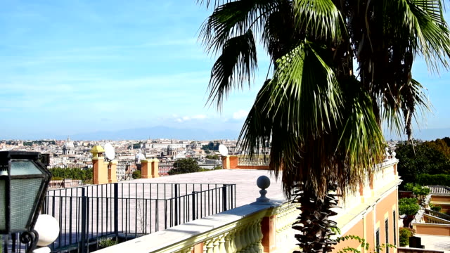 palm tree with rome cityscape on the background, italy - rome road central view video stock e b–roll