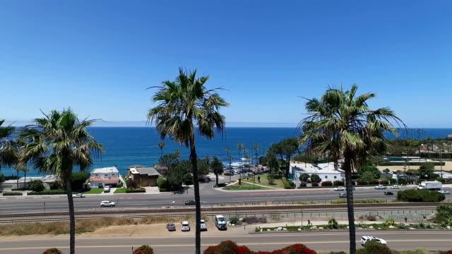 vídeos de stock e filmes b-roll de palm trees along the coast - estrada 001