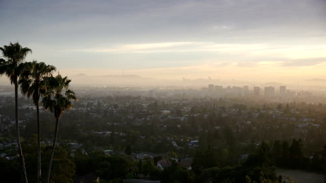 Palms and the City The light is slowly fading from the horizon as the sun sets over Oakland, California while tall palm trees wave in the wind. oakland stock videos & royalty-free footage