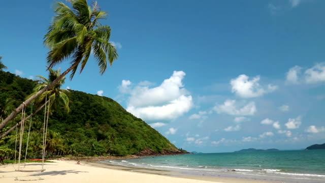 vídeos y material grabado en eventos de stock de palmeras en la playa de isla - río yangtsé