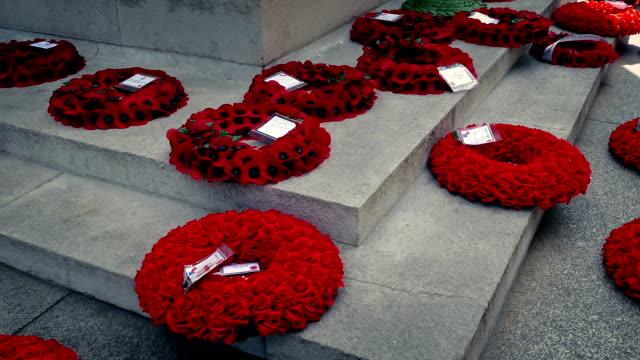 vídeos y material grabado en eventos de stock de pan a través de coronas de amapola en el monumento de la guerra - amapola planta