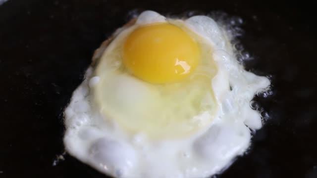 pan egg frying - icon set healthy video stock e b–roll